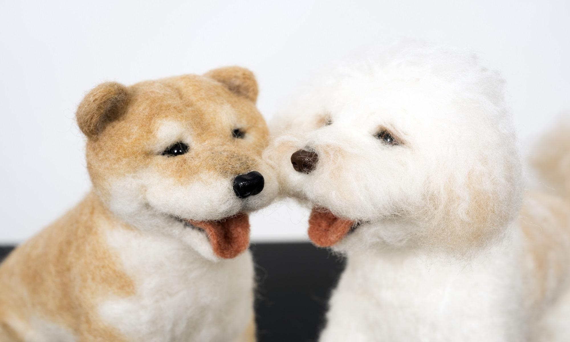 羊毛フェルトオーダー ワンちゃんと、愛犬ラッキーのお部屋